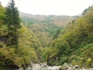 黒薙川からの景色