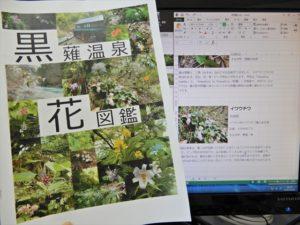 黒薙温泉花図鑑