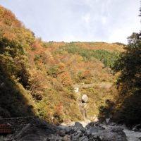 大露天風呂周辺の紅葉