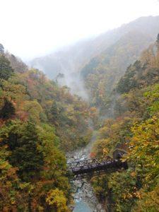 山道歩道からの景色