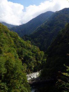 山道歩道から景色