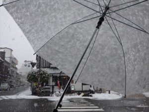 傘に積もった雪