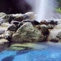 開湯から約150年の湯処